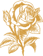 Rose Strichzeichnung, Farbe: Gold. OpenClipart-Vectors, pixabay.
